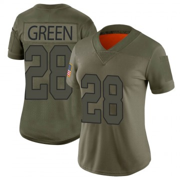 Women's Nike Washington Redskins Darrell Green Green Camo 2019 Salute to Service Jersey - Limited