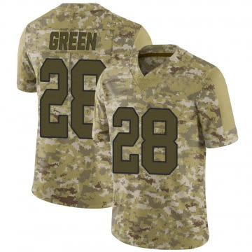 Youth Nike Washington Redskins Darrell Green Green Camo 2018 Salute to Service Jersey - Limited
