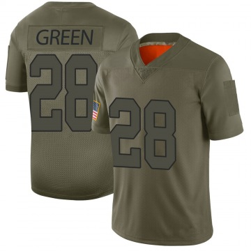 Youth Nike Washington Redskins Darrell Green Green Camo 2019 Salute to Service Jersey - Limited